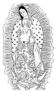 Il disegno mostra ben visibili gli elementi essenziali presenti nella tilma della Vergine di Guadalupe.